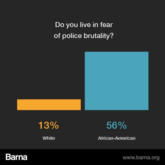 research report on police brutality